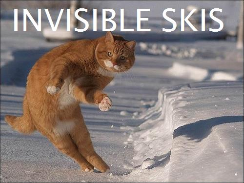 invisibleskis.jpg